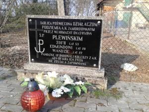 plewinscy_lesnictwo_strzalkow